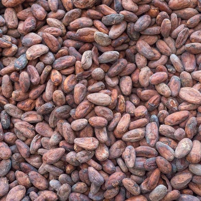 Какао бобы сырые ТМ, 100г