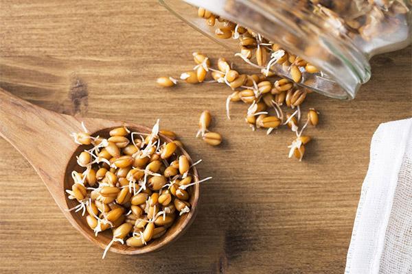 Пророщенная пшеница 100 гр