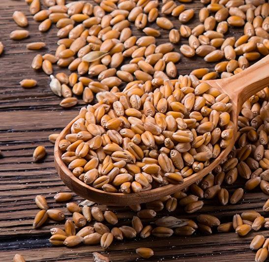 Пшеница/400гр.